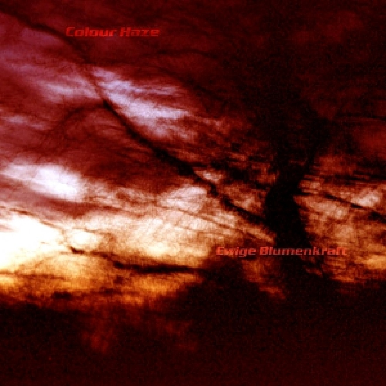 COLOUR HAZE - ewige blumenkraft CD